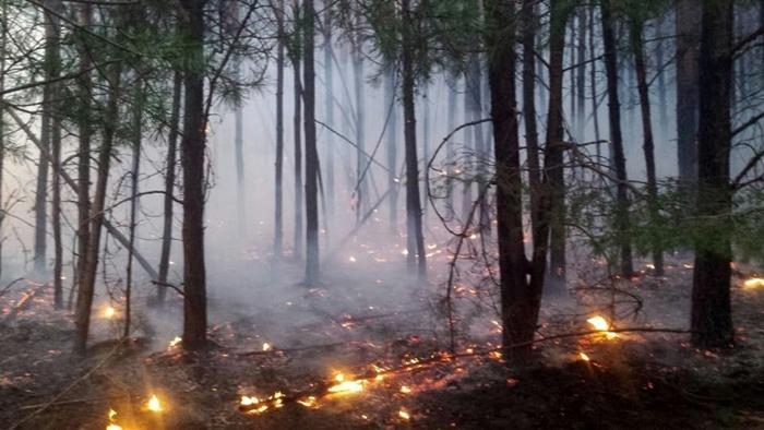 Peste 15.000 de pompieri au fost la datorie de Crăciun. Au avut peste 3300 de intervenții