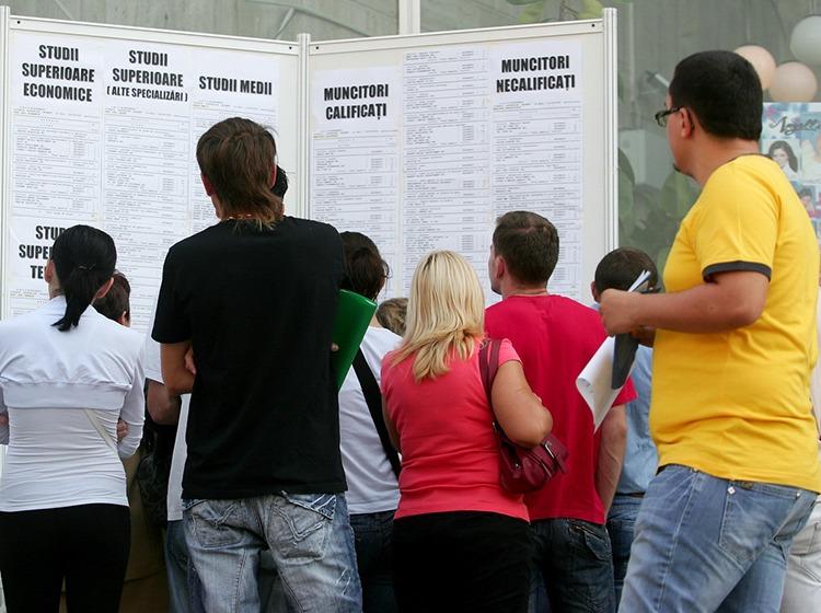 Lista locurilor de muncă vacante publicată de AJOFM Teleorman