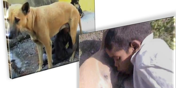 Video emoționant. Un copil sărac din India suge lapte de la o cățea